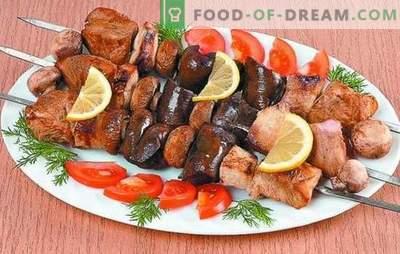 Türgi kebab: õrna liha retseptid. Kalkuni kebabide marinaadi saladused: vürtsikas, kiire, kefiir, vein