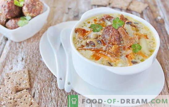 Liha lihapallidega - rõõmu rahuldav! Eri retseptid suppide ja lihapallide, nuudlite, seente, köögiviljadega
