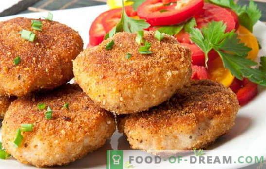 Söögid nagu lasteaias - väga maitse! Erinevate laste lihapallide valmistamine: kala, veiseliha, manna, porgand, kalkun