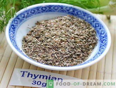 Tüümian - kirjeldus, omadused, kasutamine toiduvalmistamisel. Retseptid roogasid tüümiaga.