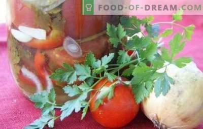 Tomatisalat sibulaga talveks: ilus magus ja vürtsikas koostis. Parimate salatiretseptide kogumine talveks tomatite ja sibulaga