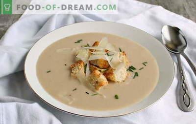 Purea di fagioli è un contorno originale per tutta la famiglia. Come cucinare una deliziosa zuppa di purea di fagioli: ricette provate