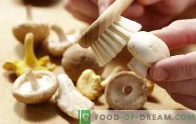 Kuidas puhastada šampinjone: keetmiseks, praadimiseks, marineerimiseks. Kas seened puhastatakse enne toiduvalmistamist ja miks?