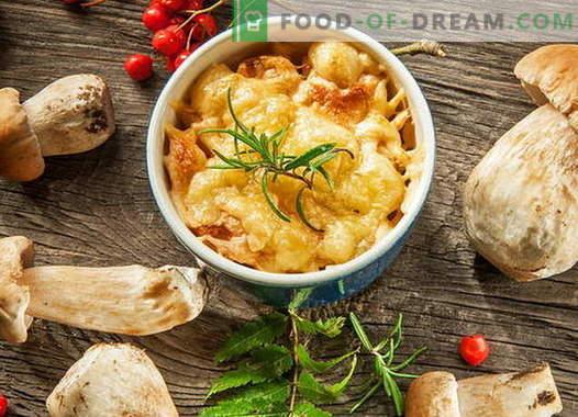 Kana julienne seentega - parimad retseptid. Kuidas süüa kana julienne.