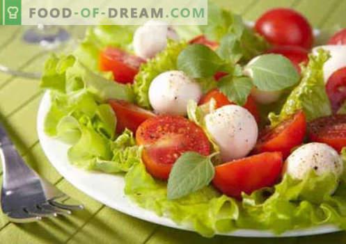 Salat tomatite ja juustuga - tõestatud kulinaarsed retseptid. Kuidas valmistada salat tomatite ja juustuga.