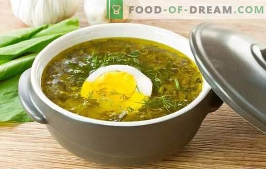 Kooriku supp munaga: samm-sammult retseptid rõõmsalt toidus. Kartuli supid koos munaga, riisiga, juustuga ja kaerahelbega