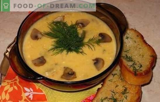 Juustupeet seentega - õrnalt, maitsev, rahuldav. Parimate juustupoegade retseptid seente, kana, köögiviljade ja suitsulihaga