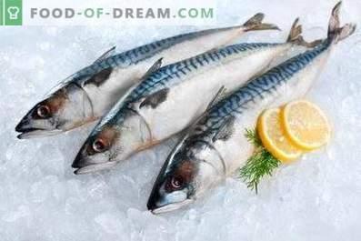 Makrele: Nutzen und Schaden für den Körper